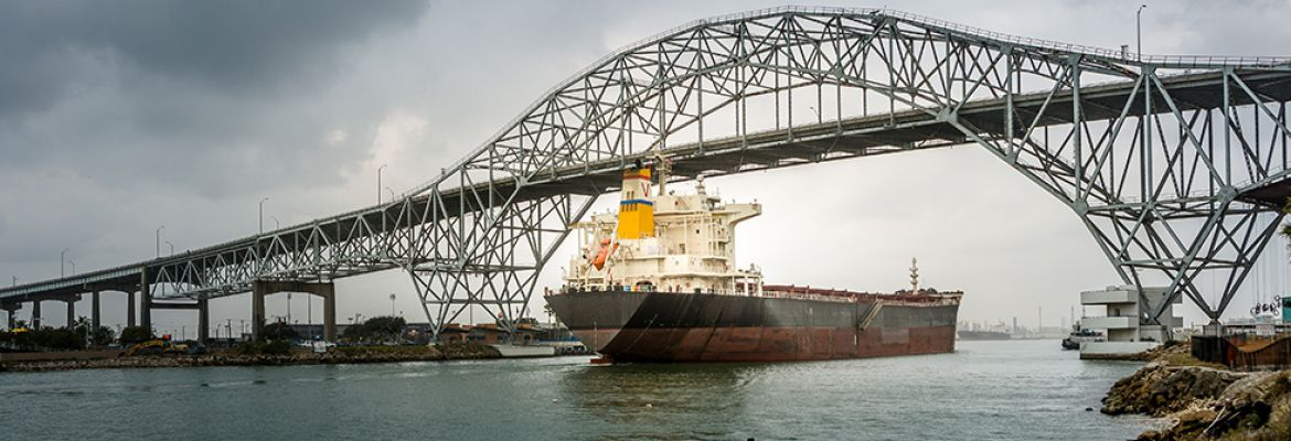 031120 Maritime Executive Bill Lines Article on Navigate Acquisition