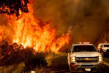 13188727 web1 M2 180822 EDH Gold Bar Fire 1200x844